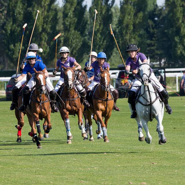 Polo-Deauville-Charriol-2016